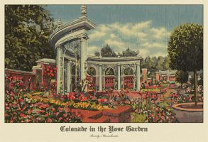 Colonnade in the Rose Garden by ironman8855