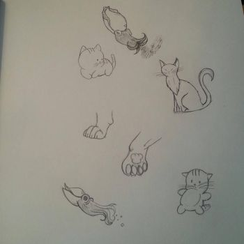 Cats and Cuttlefish by Stephie212202