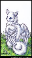 Floofy Winged Kitty by skysong