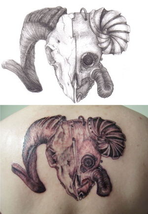 "Below is ""aries, the ram tattoo"" at the 1st sitting."