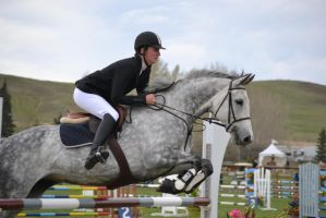 Show Jumping - 6 by Silver-Stock-Images