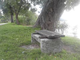bench by the lake... by JoeJonasFans92