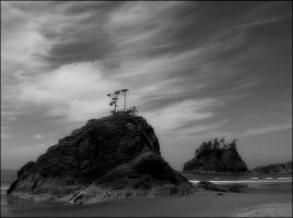 La Push Beach by aponom