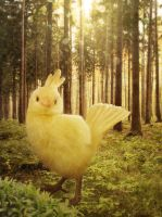 Yellow Chocobo by peroline