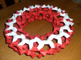 origami torus by pepel57