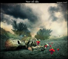 Year of life by Azoz7