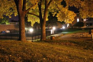 .Autumn at Midnight. by decayedroses