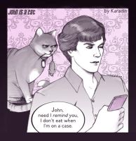 John Watson is a cat by karadin
