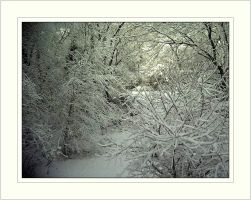 .:Snow Stock3:. by MissyStock