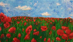 Poppy Field by Hi-tops