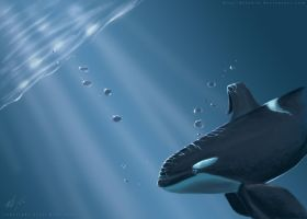 How far is Home? by maui-dolphin