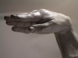 Hand Study   front view by Jengabean