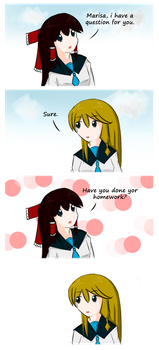 Touhou Frame #13 by Hydraulicpen