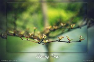 Spring Time by ianyumi