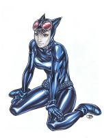 CatWoman Marker 4 Mattie by FooRay