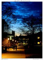 night walk down Princeton Univ by yellowcaseartist