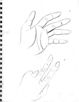 Hand Studies 1 by chelsea-s21