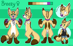 Breezy Ref by TheWardenX3