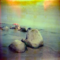 Holga_218_RS200_cross by xxlogre