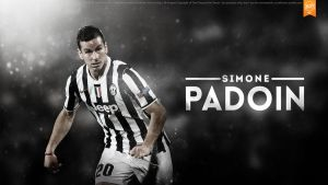 Simone Padoin - wallpaper by Nucleo1991