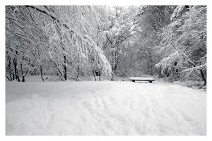Seat in the snow by FlippinPhil