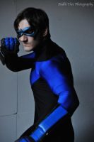 Nightwing: Fearless by Bluebird0020