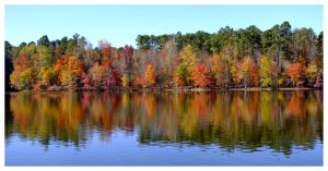Fall Colors by evaPM