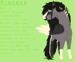 Minerva Reference Sheet by flawless-brony