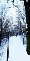 welcome to narnia by DanielGliese