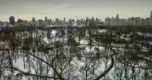 A View Across the Central Park by steeber
