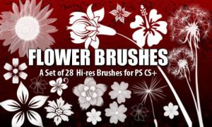 Flower Brushes 4 Photoshop CS+ by fiftyfivepixels