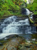 Ricketts Glen State Park 24 by Dracoart-Stock