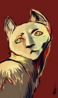 Magic cat by Kristanian-Gallery