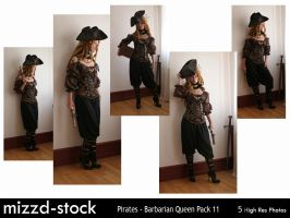 Pirates - Barbarian Queen Pack 11 by mizzd-stock