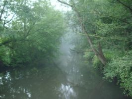 Fog on the river by 52701550138