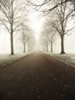 Pea-souper park by Dosulan