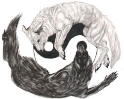 Yin Yang - With Wolves by JMoona