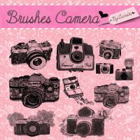 Brushes Camera by:Lucesita by LucesitaEditions