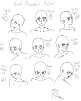 New Project - Head Directions by Eyzmair-chan