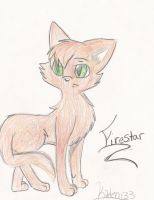 Firestar Leader of Thunderclan by kitten133
