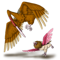 Spearow and evo by AFrozenHeart2