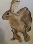 Hare 10 by whydoyoucaresomuch