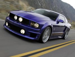 Mustang Shelby WCC by TheCarloos