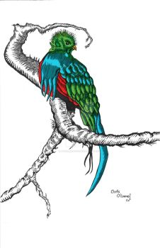 Inked Quetzal-colored by theartofco2