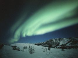 Winter Northern Lights by Fell-Wolf