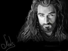 Richard Armitage as Thorin Oakenshield by MrsMals