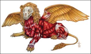 Winged Lion Anatomy by Anuwolf