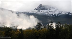 Mountain from Below by Cleonor