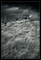 The grassy bunker by MessiahKhan