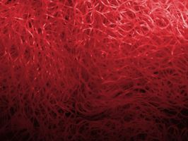 Red Fibers by Cynthetic